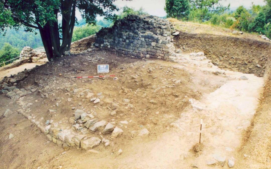 fig.6. Immagine che mostra l'Area 1000 poco dopo l'inizio dello scavo.