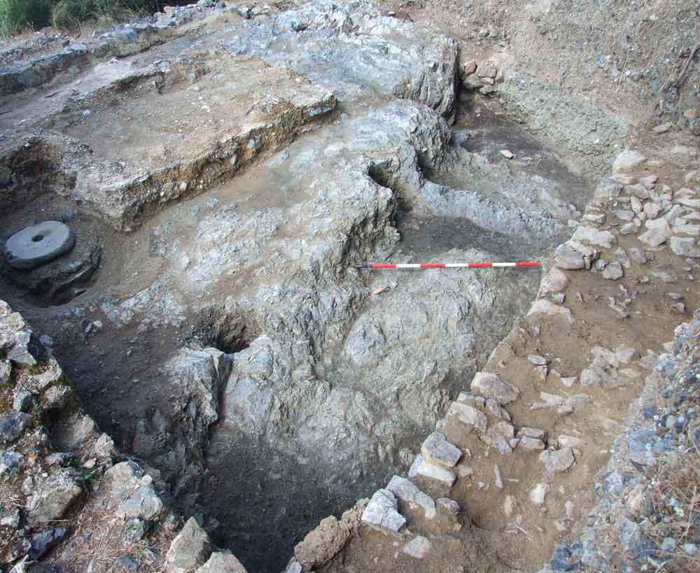 fig.1. Le buche per palo delle strutture in materiale deperibile del villaggio altomedievale (viste da sud-est)