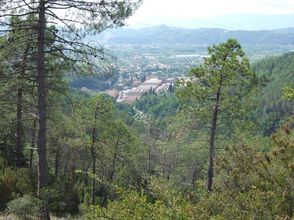 fig.10. Il complesso industriale della ceramica Vaccari visto dal sentiero nel bosco che si dirige verso   la Brina.