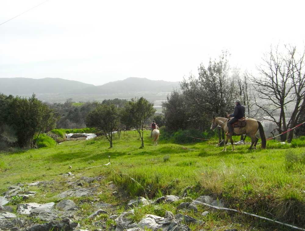 fig.12. Il sentiero che si inoltra nel pianoro mediano del castello della Brina è percorribile a piedi e   anche a cavallo.