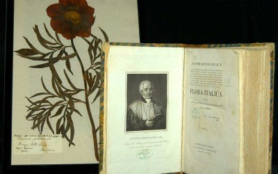 fig.2. Frontespizio di uno dei volumi della Flora Italica scritta da Antonio Bertoloni, Bononiae, R.   Masi, 1833-1854.