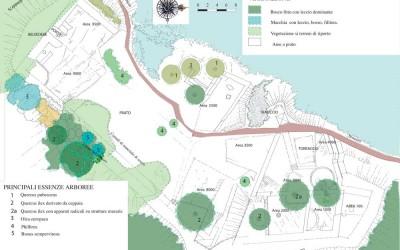 fig.6. Tavola progettuale con mappatura delle principali essenze arboree sul sito della Brina.