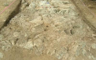 Fig. 6. Porzione sud-orientale dell'Area 8000 in corso di scavo.