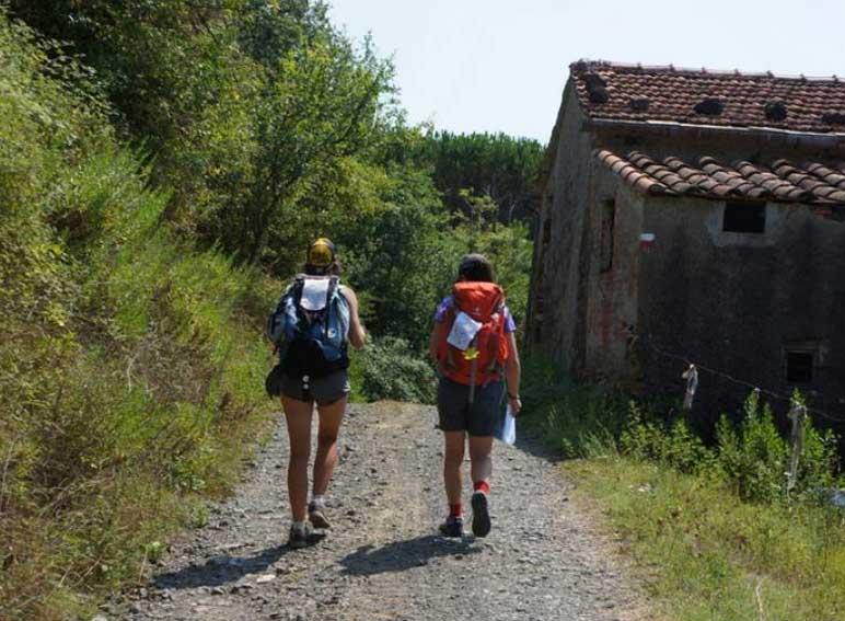 fig.7. La strada sterrata vicinale che da Ponzano si dirige verso la Brina.