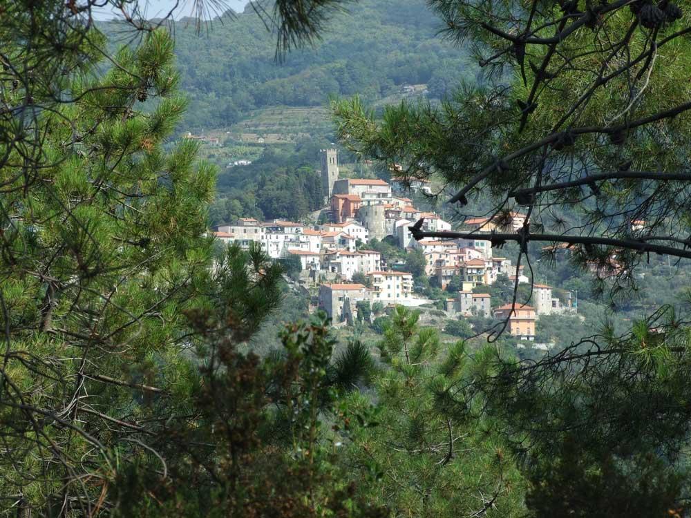 fig.9. Il castello di Falcinello visto dal sentiero nel bosco che si dirige verso la Brina.