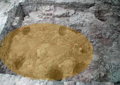 fig.2.Le buche per la palificazione di una capanna a pianta ovale sulla sommità della Brina (Area 1000)